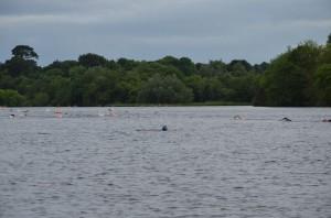 Castleconnell Summer Solstice Dip/open water club news